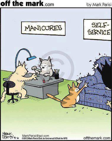 Manicures-for-Cats