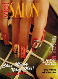Cover by Robert Nguyen for Viet Salon