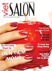 Cover by Holly Schippers for Viet Salon